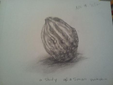 Study of a little pumpkin by reminiscence14