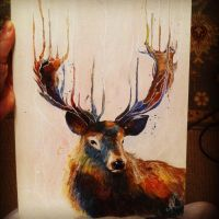 Acoustic Stag by Letsliedownwithlions