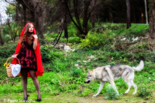 Little Red Riding Hood an The Wolf by dknight2000
