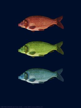 RGB Fish by and1art