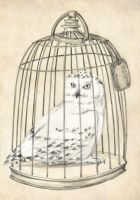 Hedwig by lotjeoef