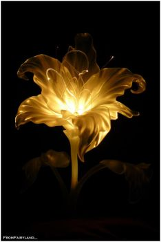 The Golden Flower by fromfairyland