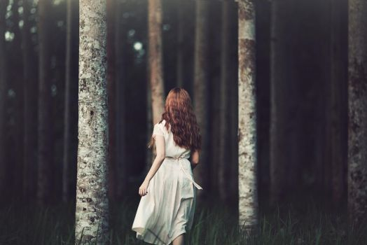 Into the dark woods by bwaworga
