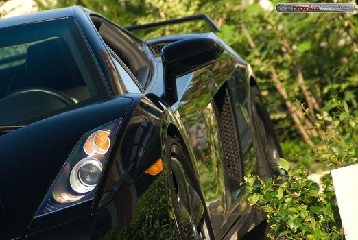Lost Gallardo in the bush by ZondaC12