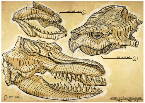 Sketches: Animal Skulls by Carneage