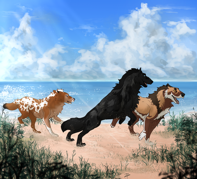 Race to the Sea by Aminirus
