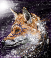 The star collector by ghostwolfen