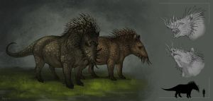 Ancistrus pig by Anisis