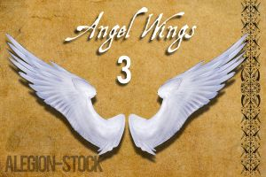 Angel Wings 3 PNG Stock by Alegion-stock
