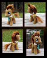 My Little Pony Dr Whooves Custom 2 by kaizerin