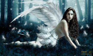 Lost Angel by tinca2