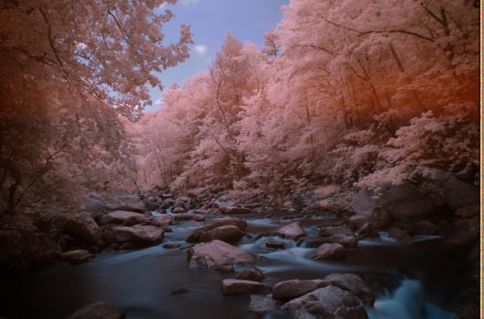 Day 129: Narrows Infrared II by alex10819
