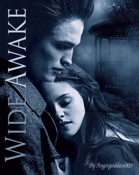 Wide Awake - Banner by Captivated2