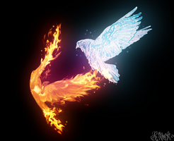 Fire Vs Ice by Grace-Likes-Cake