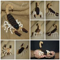 The Crocheted: Scorpion by janey-in-a-bottle