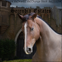 Stable Avatar ~ Serendia Estates by TheHorseAddict