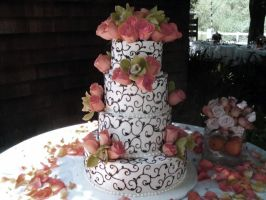 Wedding Cake by BivinsPhotography
