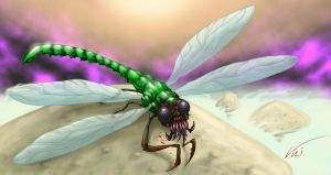 Dragonfly by tipitai