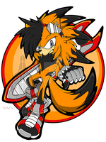 Sonic Channel: Ryker the Porcupine by WickedZekrom
