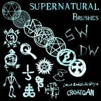 21 SPN Brushes by TheGeminiSage