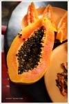 papaya by AndrewMackenzi
