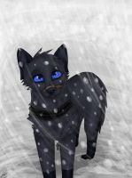 Snowing by Murley