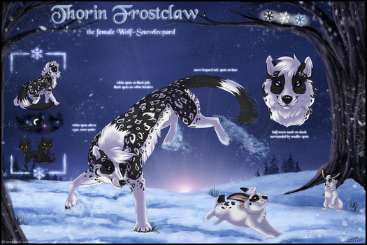 Thorin Frostclaw - Sheet 2017 by ThorinFrostclaw