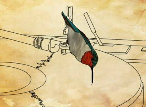101 Uses for a Pet Hummingbird- #23 by Psychoticomic