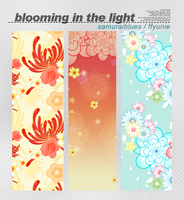 blooming in the light by ffyunie