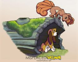 The Fox (Pokemon) and the Hound