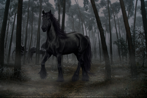 The HighwayMan by Eagle-Cry-Designs