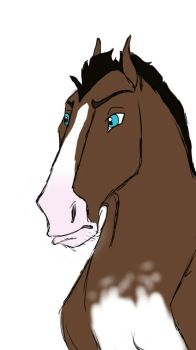 Sketch a horse challenge by Wolveshowlin24