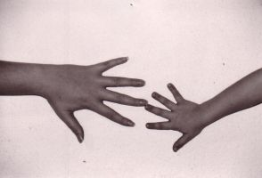 Hands by Dalilama