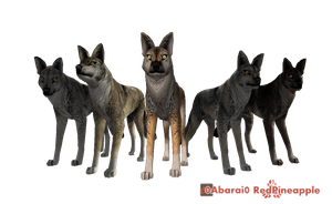 FREE Wolf Quest Presets by 0Abarai0