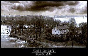 Cold and Life by pachylla