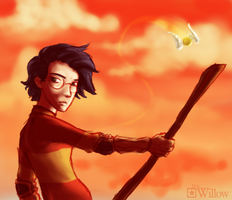 Quidditch Harry - speed painting by LA-P