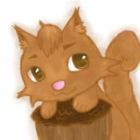 Squirrel GIF by Misanuroka