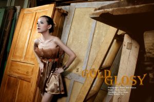 .: GOLD GLOSY :. by disconation