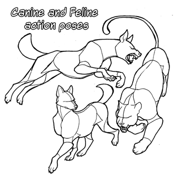 Pose Reference: Canine and Feline Actions + DLC by ARVEN92