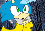 Shade the hedgehog by Kevster823