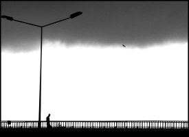 man on the road by eylemmm